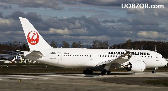 В Лондоне задержали японского пилота, который находился на борту самолета с 1,89 промилле