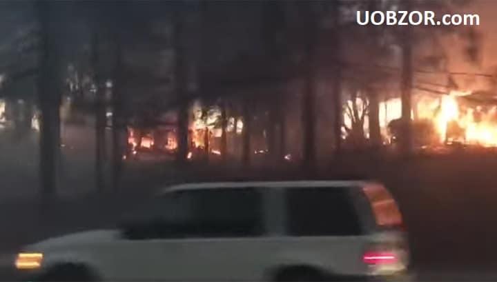 Лісова пожежа в Каліфорнії спалила більше 2 тис. будинків