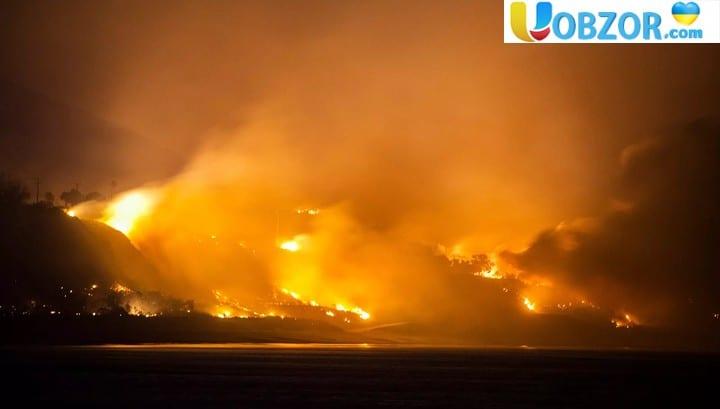 Американка зняла на відео свою подорож крізь лісову пожежу в Каліфорнії