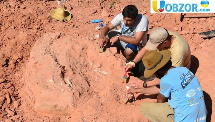 Палеонтологи знайшли цінні останки довгошиїх динозаврів