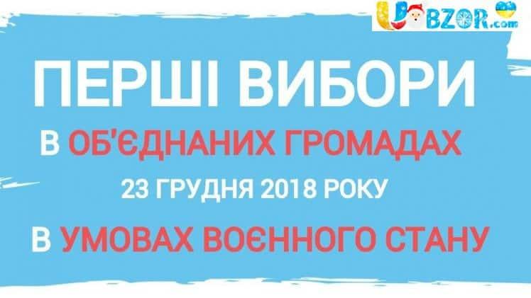 Комітет виборців оприлюднив результати виборів глав Об'єднаних громад