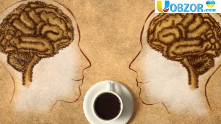 Кава не тільки бадьорить, але і захищає від деградації мозку