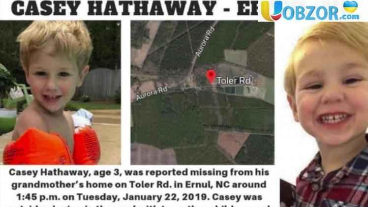 У США загублений в лісі 3-річний хлопчик стверджує, що його врятував ведмідь