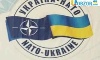 """""""УКРАЇНА-НАТО"""": уряд схвалив національну програму на 2019 рік"""