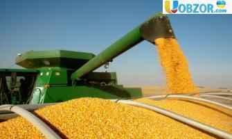 Україна наростила експорт ячменю в Саудівську Аравію на 17%