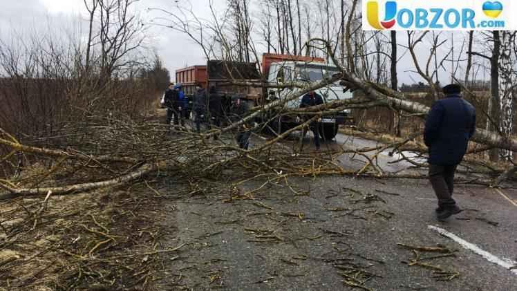 Непогода в Україні: знеструмлено понад 500 населених пунктів в 15 областях