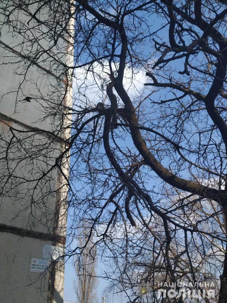 У Харкові з 16-поверхового будинку стрибнула 18-річна дівчина