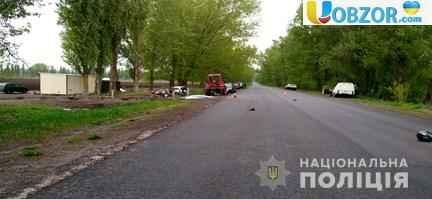 Депутат Яготинської міськрої ради збив на смерть батька і сина