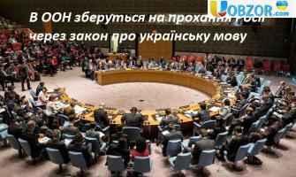 В ООН зберуться на прохання Росії через закон про українську мову