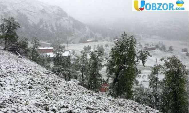 В Івано-Франківській області випав сніг 7 травня