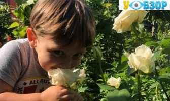 Затримано підозрюваних у вбивстві трирічного хлопчика в Києві